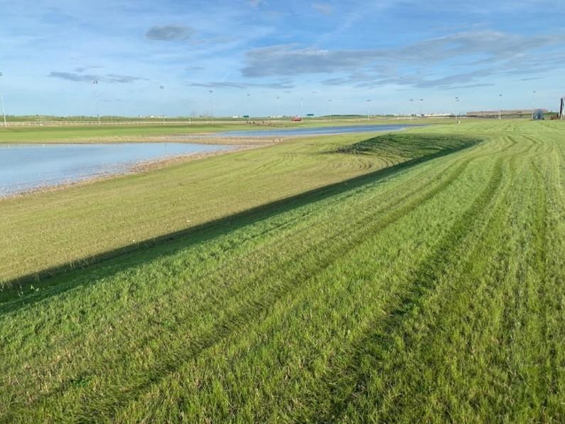 EFC Developments Landscaping